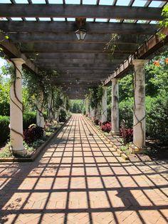 Pergola at Stowe Botanical Gardens