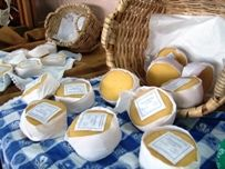 Queijo Serra da estrela, Portuguese Cheese, Portugal