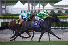 Lady Eli (left, yellow saddle cloth) fights with Sunset Glow in the final stretch of the Breeders' Cup Juvenile Fillies Turf (G. I) at Santa Anita on October Crawford Ifland Photo Derby Horse, Photo Store, October 31, Horse Photos, Horse Racing, Glow, Santa, Horses, Sunset