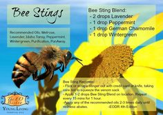 Young Living Essential Oils: Bee Bug Insect Sting
