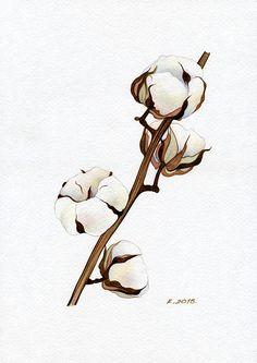 Cotton, plant, flower, herbs, Natalia Komisarova  NatalieStorePainting   You can also find me on: EBAY: http://stores.ebay.com/NatalieStorePainting ETSY: https://www.etsy.com/shop/NatalieStorePainting PINTEREST: https://www.pinterest.com/NatalieStore FLICKR: https://www.flickr.com/photos/nataliestorepainting YOUTUBE: https://www.youtube.com/c/NatalieKomisarovaWatercolor  #NataliePaintings #NatalieStorePainting #Quick_sketch #Painting #watercolor #Flowers #herbs