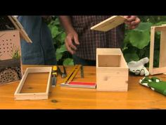"""Come costruire un """"Bug Hotel"""", rifugio naturale per insetti - YouTube Bug, Bird Houses, Youtube, Gardening, Lawn And Garden, Birdhouses, Nesting Boxes, Youtubers, Youtube Movies"""
