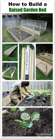 How to Build a Raised Garden Bed in Your Backyard using cedar, stakes, lawn and leaf bags to line the raised garden beds, and how to fill the raised garden beds. Watch the video tutorial! - Thrift Diving - Another! Building Raised Garden Beds, Raised Beds, Diy Garden, Garden Landscaping, Cedar Garden, Landscaping Ideas, Quick Garden, Garden Tools, Organic Gardening