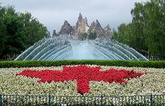 Canada's Wonderland  http://www.fictionpress.com/s/2758858/1/If-Only-Tonight