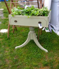 Repurposed Drawer as a planter ~ Put a top on it and make it a side table!!!!