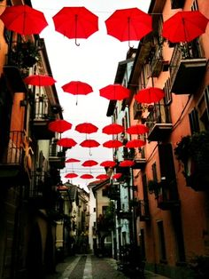 Piove. (Cuneo, oggi)
