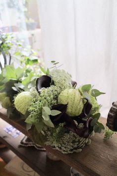 Yumi Saito Paris Diplôme レッスンブーケドマリエ | Coin de nature ~ Coin, Cabbage, Paris, Vegetables, Nature, Flowers, Montmartre Paris, Naturaleza, Cabbages