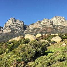 Day 5 of the #7daynaturechallenge  ROCK ON. Some of the oldest rocks on the planet... #tablemountain  Today's nomination is @greenteaandchocolate - looking forward to seeing more of those beautiful lush landscapes! #tablemountainnationalpark #capetown #southafrica #mountains #nature #landscape #rock #geology #sky #peaks #12apostles #scrub #bush #mountaintop #vista #solidasarock by rustymonkey8 http://ift.tt/1ijk11S