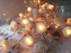 White Rose Twinkle Lights