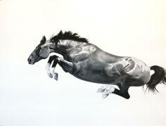 Michael Zavros - Black Horse