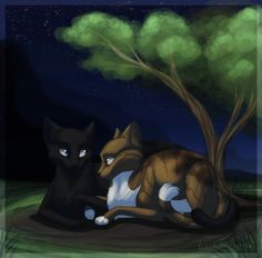 Feuille de Lune et Plume de Jais (Leafpool and Crowfeather)