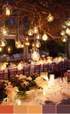 love the lights from the branches- use garland of curled grape vines to add to tree branches - start high and swirl downward like a chandelier