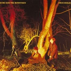 Echo and the Bunnymen  - crocodiles  #1980