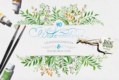 Watercolor leaves by BON-design on @creativemarket