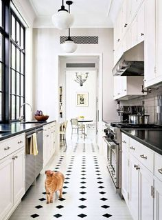 bright white + black galley kitchen (+ kitty).