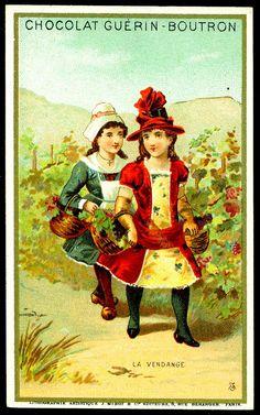 "https://flic.kr/p/9G5AtA | French Tradecard - Fruit Pickers #1 | Chocolat Guerin-Boutron ""Children Picking Fruit"" c1900"