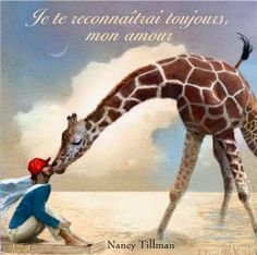 Je te reconnaîtrai toujours, mon amour – N.Tillman/trad.E.Duval – 30 p. - Kaléidoscope – 2014 – 12.50 €