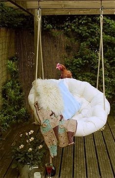 Papasan Chair hanging on a patio - love the chicken!!