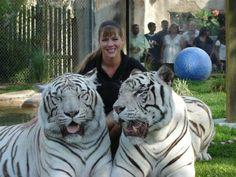 Lucky Zookeeper Tiene el Mejor Trabajo Del Mundo http://www.sitioviral.com/el-mejor-trabajo-del-mundo/