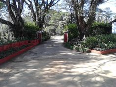 Our lovely walkway will give you the first glimpse of the lovely surroundings you can spend your holiday in, if you decide to try our homestay!