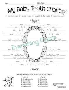 Baby tooth chart medical form to keep track of when each tooth was baby tooth chart pdfprintable ccuart Image collections