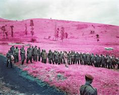 "Quick"", a series of photos from Eastern Congo, by Richard Mosse. No photoshop here, Mosse shot these with Kodak Aerochrome infrared film! Richard Mosse, The Doors Of Perception, Infrared Photography, Documentary Photographers, Green Landscape, No Photoshop, Photo Series, New Perspective, Photojournalism"