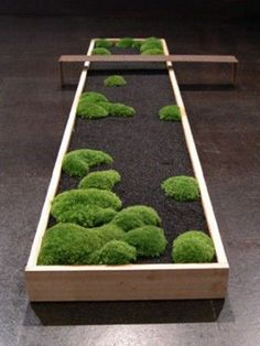"The Design Walker • moss ""garden"": Miniatures Bonsai, Modern Planters,..."