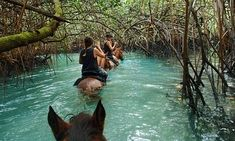 Vanuatu's Espiritu Santo, where paradise is a leaky canoe without a paddle Tonga, Vanuatu, Places To Travel, Places To See, Papua Nova Guiné, The Beautiful Country, Beautiful Places, Cruise Travel, Cruise Vacation