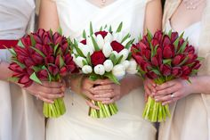 Red and white tulip and rose wedding bouquets. Bride and bridesmaids holding red tulip wedding bouquets. Tulip Bouquet Wedding, Bridal Flowers, White Tulip Bouquet, Flower Bouquets, Rose Bouquet, Red And White Roses, White Tulips, White Flowers, November Wedding Flowers