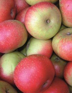 Bramble pancakes with caramel apples