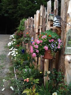 my hand made cedar scrap fence is filling in nicely now that the plants have spread and grown and taken over!