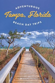 Taking a vacation to Tampa, Florida? Not only should you be excited about hitting the beach but we've rounded up some adventurous day trips to take in the area!