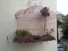 Macetas con jaulas