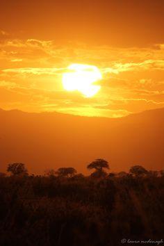 Kenya. Sunset, Tsavo East National Park