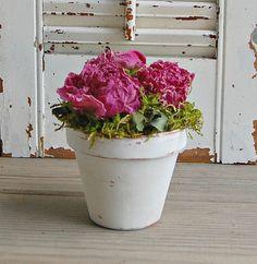 Dried Flower Arrangement / Dried Peonies / White by roseflower48