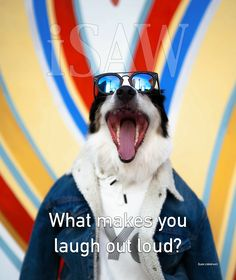 What makes you laugh out loud?