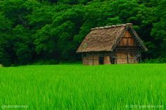 This is a rice barn in the architectural style is known as gassho-zukuri. More at www.naturalhomes.org/timeline/gassho-zukuri.htm