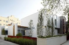 """Bucktown Three House by Studio Dwell Architects  """"for the modern home lover in me"""""""