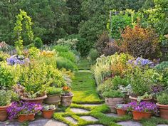 Classic terra-cotta containers planted with agapanthus, nicotiana, petunias, and other flowers in drifts of romantic color flank a path with stepping stones.