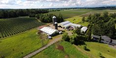 If farm living is the life for you, this farm is certainly for you.  This farm is currently used for horses, but was formerly a dairy farm.  There are 18.33 acres, 2 large barns, large 4 bay shop, and a machine shed.  Both pellet