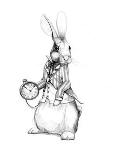 Fairy Tale Illustrations on Drawing Served Rabbit Drawing, Rabbit Art, Fairy Tale Tattoo, Lapin Art, Alice In Wonderland Drawings, Rabbit Tattoos, White Rabbit Tattoo, Bunny Art, Black And White Drawing