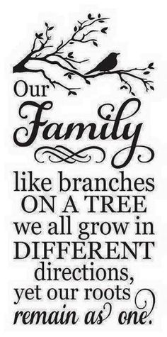 Trendy family tree painting on canvas diy stencils Trendy Tree, Lettering, Painted Signs, Family History, Silhouette Cameo, Tree Silhouette, Embroidery Designs, Embroidery Thread, Stencils