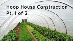 Have you heard of aquaponics? Aquaponics Combines the Growing of Fish and Plants You may grow plants in water and without soil and once one does this together with growing fish you are practicing aquaponics. Best Greenhouse, Aquaponics Greenhouse, Backyard Greenhouse, Aquaponics Diy, Greenhouse Plans, Aquaponics System, Hydroponics, Hydroponic Growing, Greenhouse Interiors