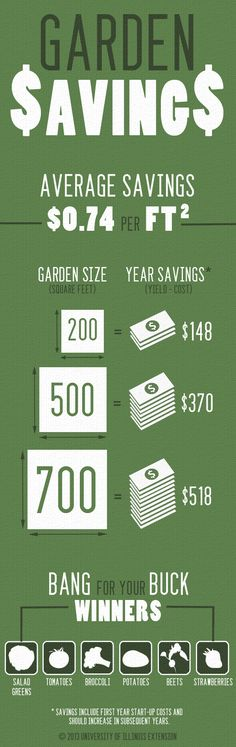 You reap many benefits when gardening, and extra cash savings is one of them! Check out how much money you can save by starting a garden.
