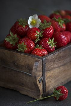 Forever, c'est pour les rêveurs... Fruit Love, Red Fruit, Healthy Fruits, Fruits And Vegetables, Burfi Recipe, Strawberry Farm, Fruit Picture, Fruit Photography, Beautiful Fruits
