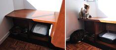 Antonio's DIY Cat Spot