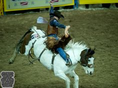 Saddle bronc rider Cody DeMoss of Heflin, LA rides Lunatic Party of Outlawbuckers Rodeo. Photo Via - Matt Cohen
