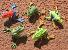 5 Jumping Frogs 3d printed Accessories Gadgets Colored with marker
