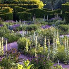 Jardin violet