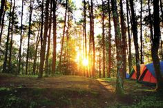 4 great campgrounds around Pocatello to explore this spring